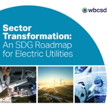 Sector Transformation: An SDG Roadmap for Electric Utilities developed by WBCSD together with 11 organisations, including Tata Power
